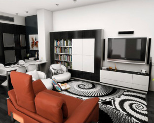 Stylish contemporary living room design