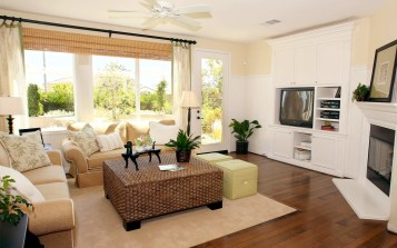 Living room interior ideas pic