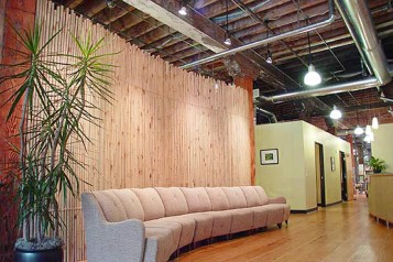 Natural Medical Office interior design