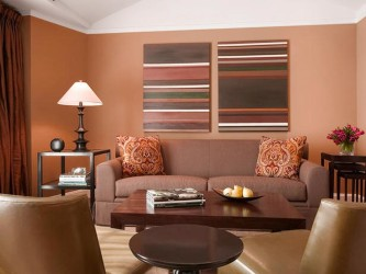 Brown living room color palettes