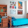 931x623px How To Get Cheap Dorm Room Ideas Essentials For Guys Picture in Bedroom