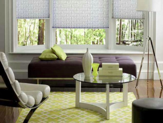 Graber hunter douglas pleated shades 1