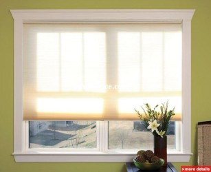 Cordless Pleated Shades Blinds