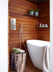 Ideas Wooden Bathroom Interiors