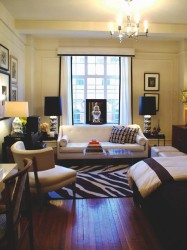 Studio Apartment Makeovers