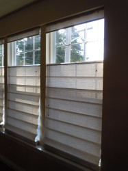 Douglas Honeycomb Shades