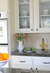 Pictures Of Glass Front Kitchen Cabinet Doors