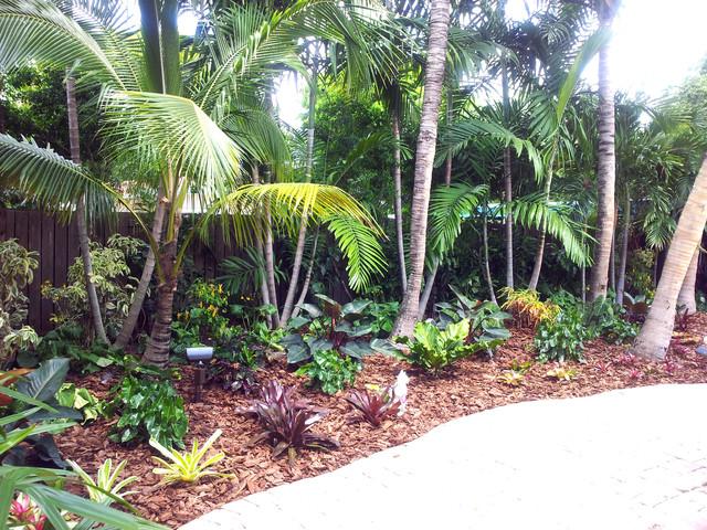 Backyard Makeover Tropical Landscape