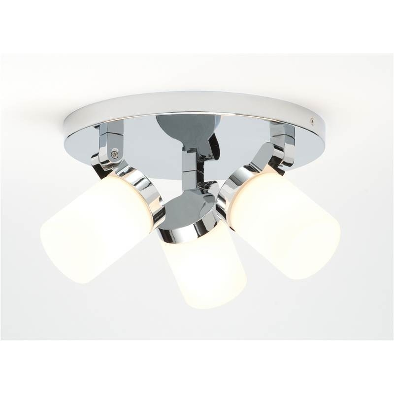 Bathroom Ceiling Lights  Image Collection