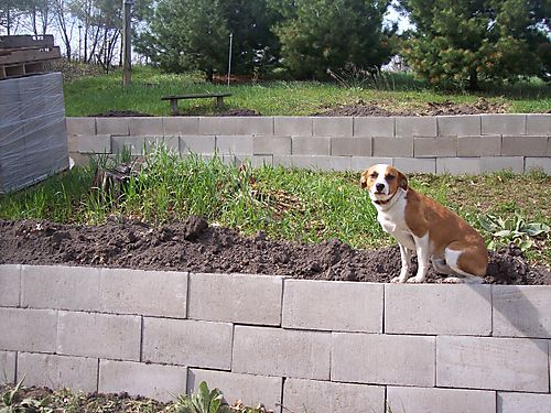 Breathtaking  Retaining Wall Construction
