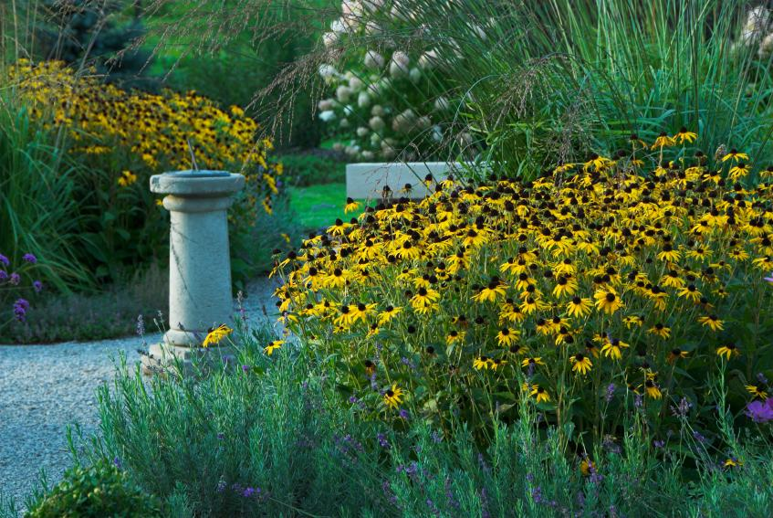 Breathtaking  Rock Garden Ideas