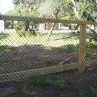 Charming dog fencing options