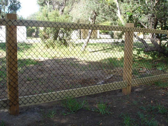 Charming Dog Fencing Options Cheap Material For Dog