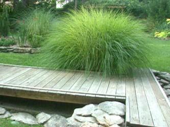 Charming  Rock Garden Design
