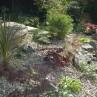 Charming  small backyard landscape ideas