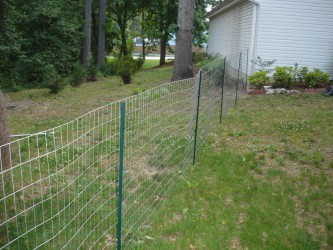 Charming Temporary Dog Fence Photo Collection