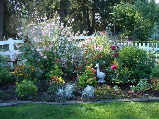 Color In The Perennial Garden