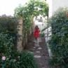 Dilemma in Landscaping: Narrow Side Yards