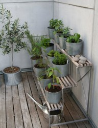 Herb Garden Design For Beginners