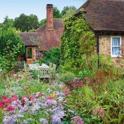 How To Landscape Cottage like Home In Front Of Busy Street
