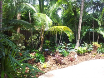 Lovely  Landscaping Ideas  Picture Collection
