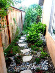 Narrow Side Yard, Stepping Stones  Product Ideas