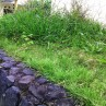 Natural Tall Ornamental Landscaping Grasses Ideas