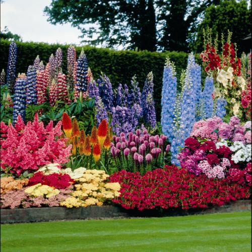 perennial flower garden designs. Perennials In The Garden Photo Gallery in the  Spotlats