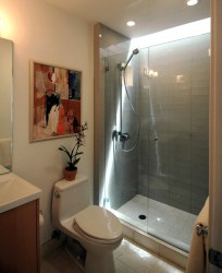 Showers Idea Modern Bathroom