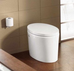 Small Toilet With Wall Color Brown Product Ideas