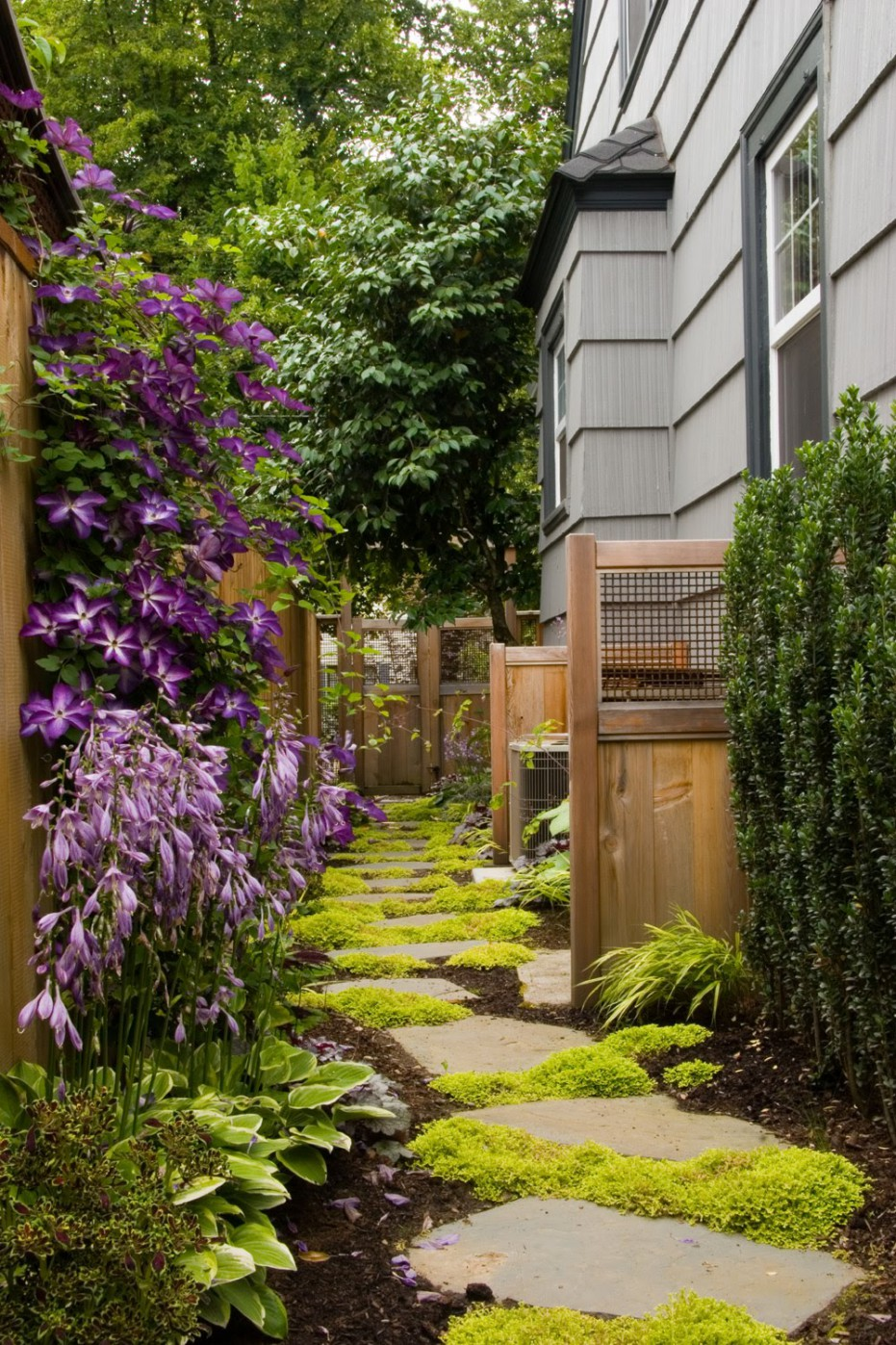 Stunning Narrow Side Yards  Product Lineup