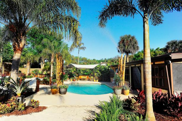 Tropical Backyard With Pool And Palm Trees