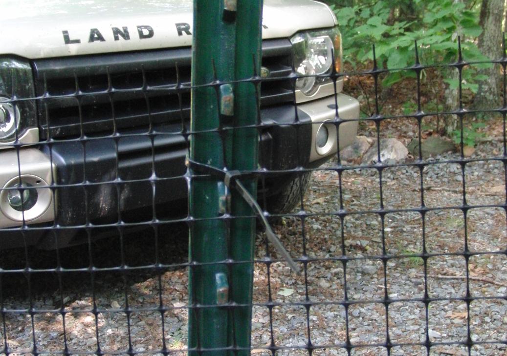 cheap dog fence 1