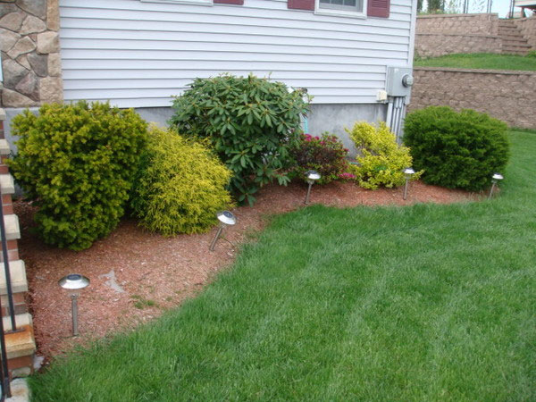 Backyard Landscaping Pictures