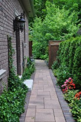 How To Makeover Narrow Side Yard Into Strip Garden Or Pathway