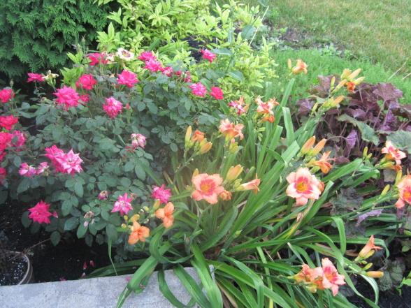 Flower Garden Designs  Picture Collection