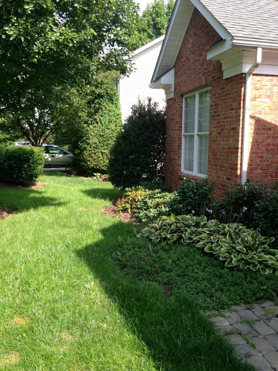 Outdoor Landscaping Ideas  Product Ideas